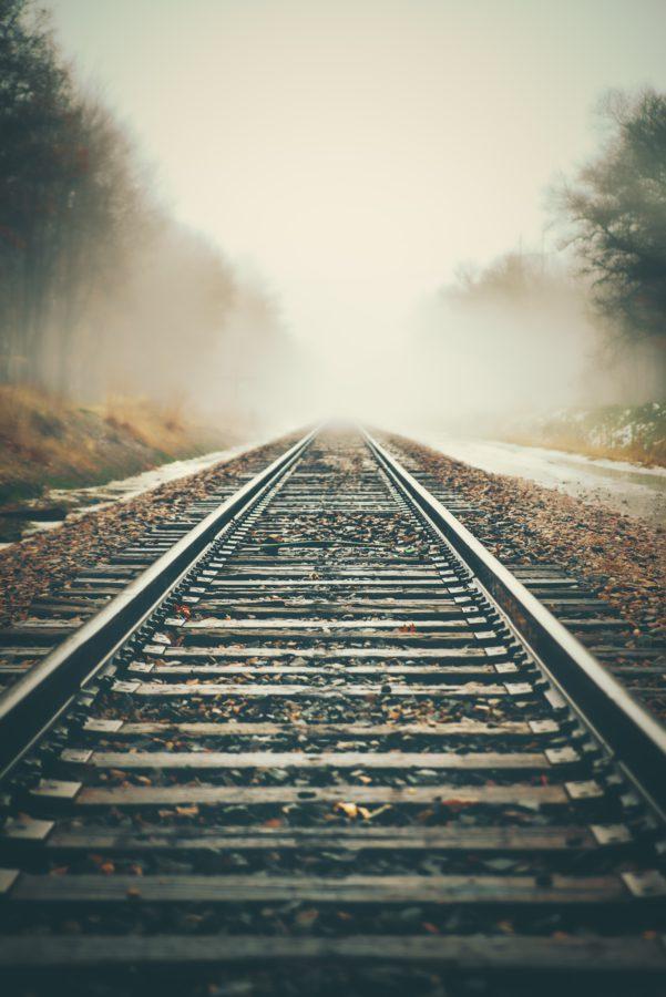 train tracks crossing a foggy wood
